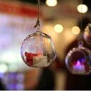 透明アクリルボール 30個セット 花瓶吊り下げ キャンドルコンテナ パーティー クリスマス デコレーション 新品【領収発行可】