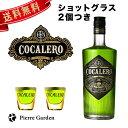 コカレロ ショットグラス 2個付き 700ml 29度 COCALERO クラブ バー ハーブリキュール