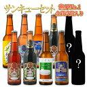 ビールクラフトビール世界一受賞ビール飲み比べ 限定ビール入り10本詰め合わせ春のサンキューセット世界一のビールを含むセットB-IPAスワンレイクビール地ビール本州送料無料