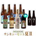 あす楽 クラフトビール 季節限定ビール入り 10本詰め合わせ