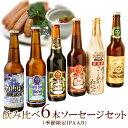 お歳暮ギフトビールクラフトビール世界一金賞受賞スワンレイクビール飲み比べ6本 越乃黄金豚ソーセージ詰め合わせ地ビール送料無料