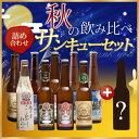【福袋】 【送料無料】世界一のビールを含むスワンレイクビールを飲み比べ10本詰め合せパーティセット!