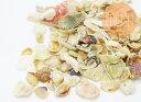 【ミニチュアパーツ】 海からの贈り物 クラッシュ シェル 天然素材 たっぷり10g入り
