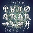 (744)【ミニ星座パーツ】 12星座全部セット ミニチュアパーツ レジンやネイルの封入パーツ