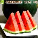 すいか 北海道富良野産 有機肥料でとっても甘く育ったスイカ Lサイズ 1玉5kg以上 一部の地域 送料無料