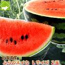 すいか 北海道富良野産 有機肥料でとっても甘く育ったスイカ Lサイズ 1玉5kg以上 【送料無料】【10P03Dec16】