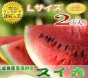 北海道富良野産 スイカ Lサイズ 2玉入り 送料無料