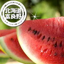 北海道富良野産 スイカ 2Lサイズ 6-7.5kg1玉【10P03Dec16】