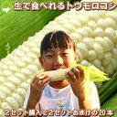 2セット買うと2セットおまけ!【幻】の白いとうもろこし 北海道富良野産 ピュアホワイト 5本(サイズ:Mサイズから2Lサイズ込) 送料無料
