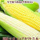 北海道富良野産 ピュアホワイト5本・恵味5本 【送料無料】 【10P03Dec16】