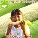 生で食べれる白いトウモロコシ 北海道富良野産 ピュアホワイト 2Lサイズ 10本入 送料無料