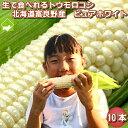とうもろこし 北海道富良野産 生で食べれるトウモロコシ ピュ...