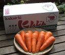 有機肥料を使用したあま〜い人参10kg北海道富良野産 低農薬ニンジン 10kg【送料無料】【北GB_連休】