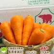 にんじん 送料無料 北海道 富良野産 低農薬栽培 訳あり 洗い 人参 10kg(SサイズからLサイズ込)【05P09Jul16】