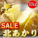 じゃがいも 送料無料 北海道 富良野産 ジャガイモ 訳あり 北あかり 10kg