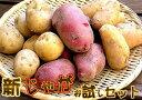 北海道産 じゃが芋(じゃがいも・ジャガイモ) 3種類10kgセット【メークイン・男爵・レッドムーン】【10P03Dec16】