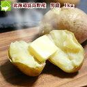 北海道富良野産 男爵(だんしゃく芋)1kg(5玉前後)