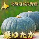 北海道富良野産 有機肥料であま〜い南瓜(かぼちゃ) 栗ゆたか 1玉(1.5kg前後)【05P09Jul16】