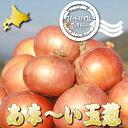 北海道富良野産低農薬であま〜い サラダ玉葱(タマネギ)特Lサイズ 10kg【送料無料】【10P03Dec16】