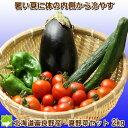 体内から冷やすクールベジタブル 【夏野菜セット 2kg詰め】【北海道_野菜】【10P03Dec16】