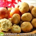 北海道富良野産 メガ盛り 野菜セット(じゃがいも・ユリ根・玉ねぎ) 10kg以上 【送料無料】 【RCP】【10P03Dec16】