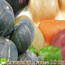 北海道富良野産 低農薬 野菜セット10kg 基本内容:ゆり根・男爵・玉ねぎ【送料無料】【ギフト対応】
