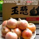 たまねぎ 送料無料 北海道富良野産 低農薬であまい 玉葱 訳あり 20kg