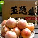 2セット購入で4kg増量 訳あり たまねぎ 北海道富良野産低農薬であま〜い 玉葱 3kg 送料無料