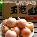 たまねぎ 送料無料 北海道富良野産低農薬であま〜い玉葱(たまねぎ)訳あり 10kg 【送料無料】【10P03Dec16】