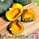 かぼちゃ 北海道富良野産 訳あり 坊ちゃんかぼちゃ 10玉【送料無料】