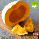 かぼちゃ 北海道富良野産 白い南瓜 雪化粧 訳あり10kg【4−8玉入】キズ、変形、変色など