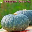 北海道富良野産 有機肥料であま?い南瓜(かぼちゃ) 栗ゆたか 10kg【10P03Dec16】