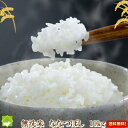 平成30年産 北海道産 無洗米 ななつぼし 10kg 送料無料【10P03Dec16】