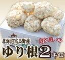 「北海道富良野産」訳あり ゆり根(百合根) 2kg  【RCP】【10P03Dec16】