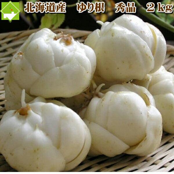 北海道富良野産 最高級 百合根(ユリ根) 2kg...の商品画像
