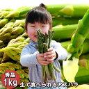 アスパラガス 予約販売 北海道 富良野産 送料無料 グリーン...
