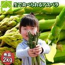 北海道富良野産 最高級スイートアスパラ秀品(Lサイズ1kgMサイズ1kg)【合計2kg】 【あす楽対応_北海道】【あす楽対応_関東】【10P03Dec16】