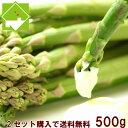 ハウス栽培 北海道富良野産 スイートアスパラ 訳あり500g【10P03Dec16】