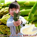 アスパラガス 北海道富良野産 グリーンアスパラ(M〜L)1kg・手づくりバターセット送料無料
