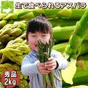 アスパラガス グリーン 秀品 S-Lサイズ込 2kg 【生】で食べられる!北海道富良野産 送料無料【10P03Dec16】