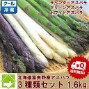 【ご予約販売】北海道富良野産 グリーン・ホワイト・ラベンダー...