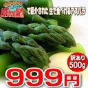 【ご予約販売】北海道ふらの産 訳ありグリーンアスパラ【500g】【10P03Dec16】
