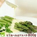 アスパラガス グリーン 最高級 秀品 Mサイズ 800g 生...