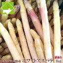 北海道富良野産 訳ありホワイトアスパラ 1kg(S〜Mサイズ込)【送料無料】 【業務用】【10P03Dec16】