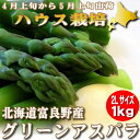アスパラ グリーン 極太 2Lサイズ 1kg ハウス栽培 北海道富良野産【送料無料】【ご予約販売】【10P03Dec16】
