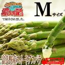 【ご予約販売】『生で食べれる』北海道富良野産 最高級グリーンアスパラガス (あすぱらがす)秀品 Mサ