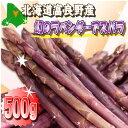 【ご予約販売】北海道ふらの産 希少な紫のラベンダーアスパラ お試し500g 【送料無料】【10P03Dec16】