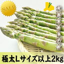【ご予約販売】北海道富良野産 グリーンアスパラガス  Lサイズから3Lサイズ 2キロ 【送料無料】【10P03Dec16】