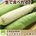 トウモロコシ ピュアホワイト