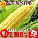 北海道富良野産 とうもろこし 恵味 秀品 2L 1